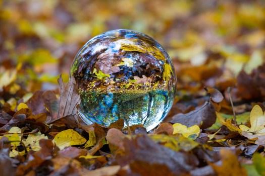 Autunno, Sfera Di Vetro, Palla, Fall Foliage