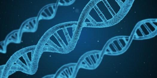 Dna, Stringa, Biologia, 3D, Biotecnologie, Chimica