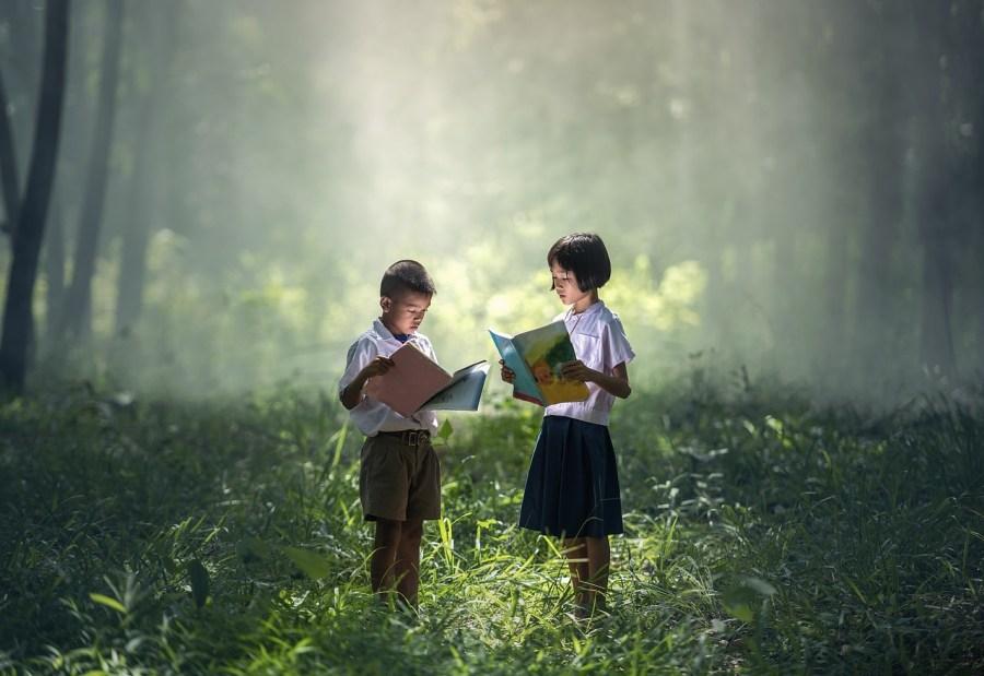 Niños leyendo libros en el campo