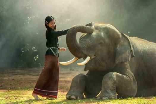 Ragazza, Africa, Animali, Asia, Cambogia, Amico