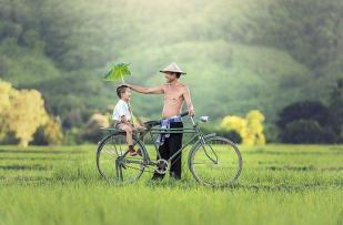 Bicycle, Relationship, Parrent, Cambodia