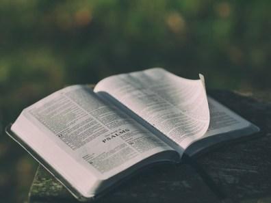 聖書, ぼかし, 本, 章, クローズ アップ, 情報, 知識, 葉, 文学, アウトドア, ページ