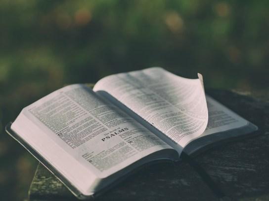 聖書, オープン, 本, ページ, 開く聖書, 詩篇, 聖書の朗読, 信仰, 宗教, 祈り, 聖書の一節, 章