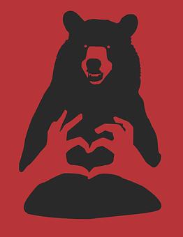 Bear Red Black Cartoon Wildlife Nature Ani