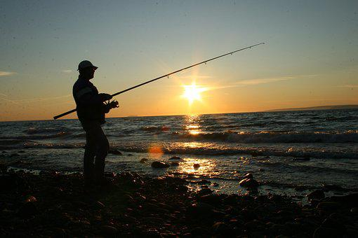 Fishing, Coast, Ocean, Sea, Water
