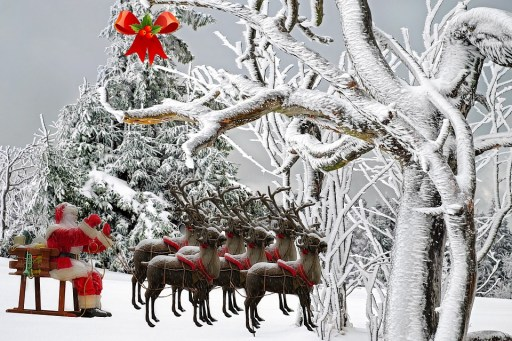 Christmas Vocabulary, Reindeer, Learn English With Africa, December 2016