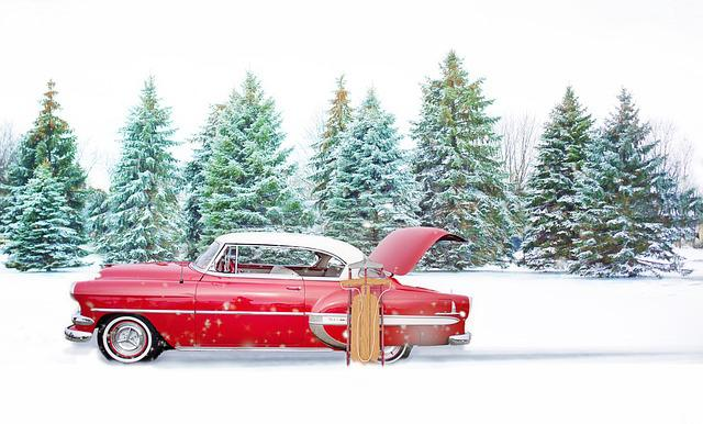 Free Photo Red Vintage Car Winter Pines Free Image On