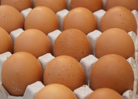eggs에 대한 이미지 검색결과