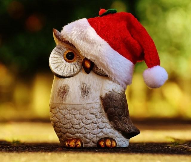 Christmas Owl Santa Hat Contemplative Figure