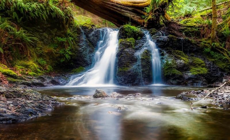 Landscape, Scenic, Beautiful, Stream, Creek, Brook