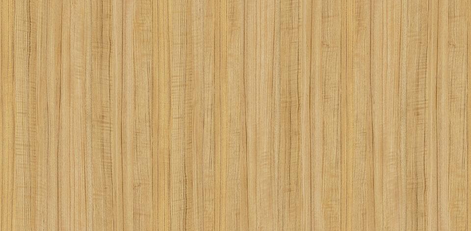 Free Photo Trees Wood Yellow Wood Oak Free Image On