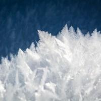 Natur og vitenskap - Snø