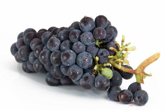 Uvas, Cacho, Frutas, Viticultura, Doces, Red, Maduro