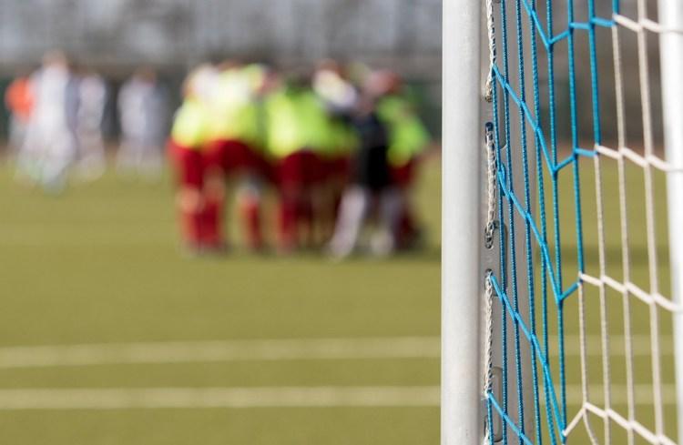 Goal, Football, Football Pitch, Ball, Grass, Adidas