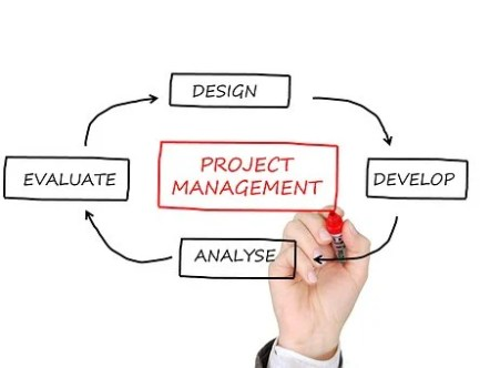 Business Processes and Project Management