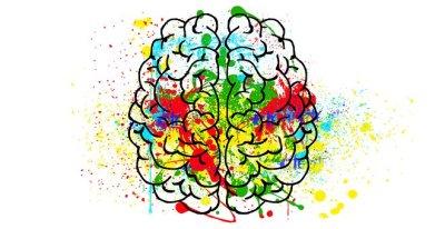 Brain, Mind, Psychology, Idea, Hearts