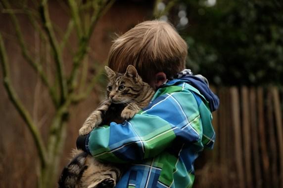 Friendship, Child, Cat, Together, Snuggle, Relationship