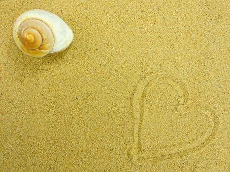 Homok, Strand, Rendszerhéj, Természet