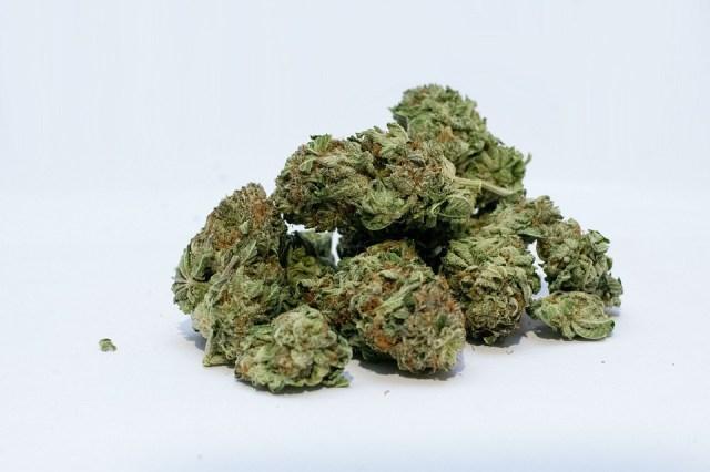 Marijuana, Cannabis, Weed, Bud, Green, Pot, Medical