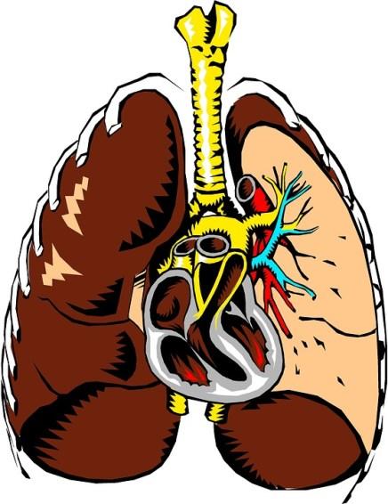 Malattie cardiache e polmonari