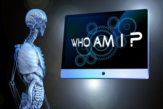 Senso, Domanda, Anatomia, Umano, Filosofia, Psicologia