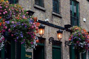 Pub, Dublin, Irlande, Splendeur Florale