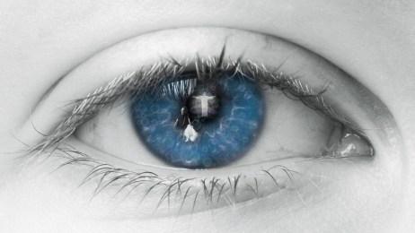Oog, Blauwe, Menselijk, Bekijk, Wimpers, Deksel
