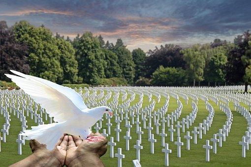 Peace Dove, White Dove, Cemetery