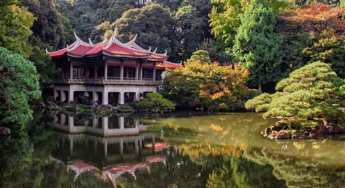 Tokyo, Parc, Nature, Japon, Asie, Paysage, Automne