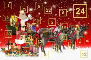 Advent Calendar, Advent, Zeit