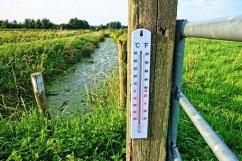 Thermometer, Temperature, Celsius