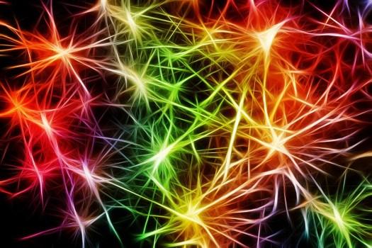 Nervi, Cellule, Star, Seppia Dendriti, Eccitazione