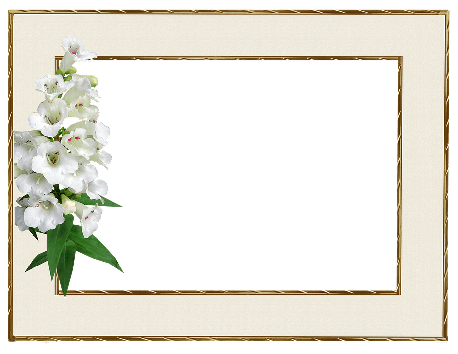 Picture Frame Empty Margin Free Photo On Pixabay