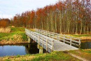 Brücke, Kanal, Banken, Gras, Grove. Außerdem Geldbedarf schnell decken.