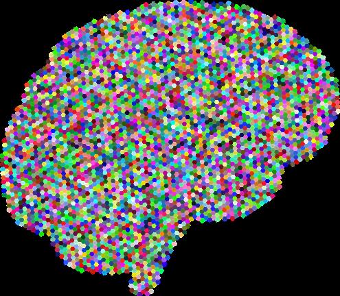 Brain, A, I, Ai, Anatomy, Artificial Intelligence