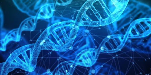 Dna, Materiale Genetico, Elica, Proteine, Biologia