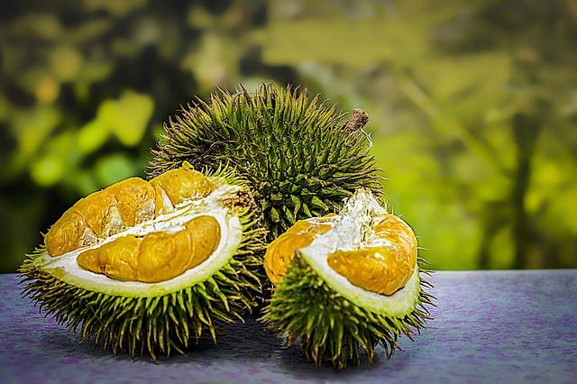 Durian Fruit Tropical Free Photo On Pixabay