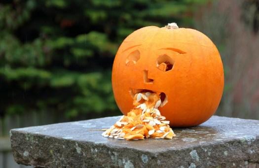 Zucca, Halloween, Nausea, Male, Indisposto, Vomito