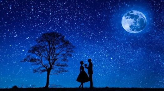 Amanti, Luna, Amore, Coppia, Fiore, Proposta, Impegno