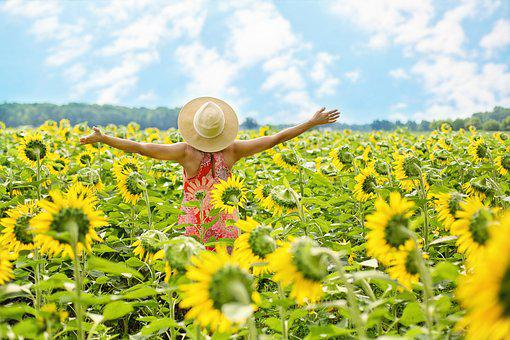 Sunflowers, Field, Woman, Yellow, Summer | How to Get Motivated to Lose Weight