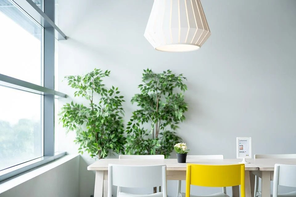 Ikea, Table, Dining, Chair, Lamp, Plant, Natural