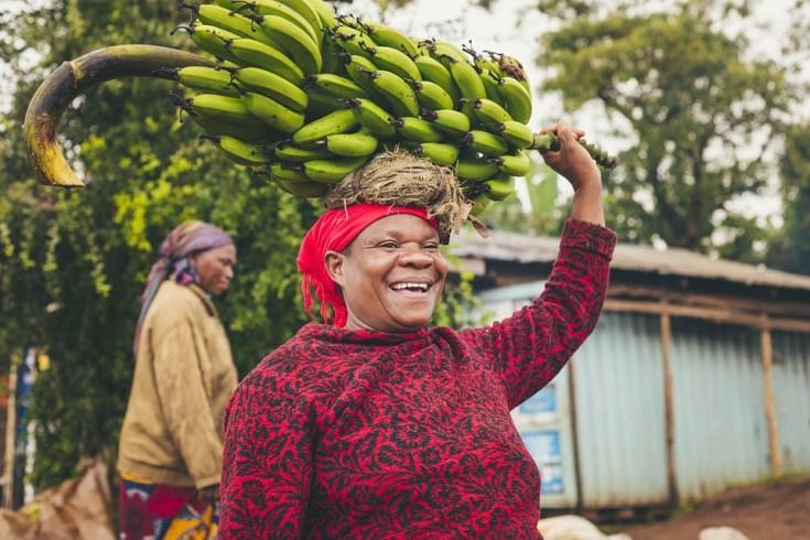 benefits of ripe bananas, health benefits of dried bananas, benefits of dried bananas, benefits to bananas,