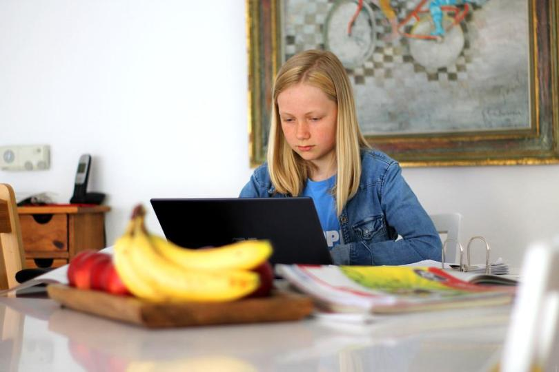 Homeschooling, School, Technology, Digital, Computer