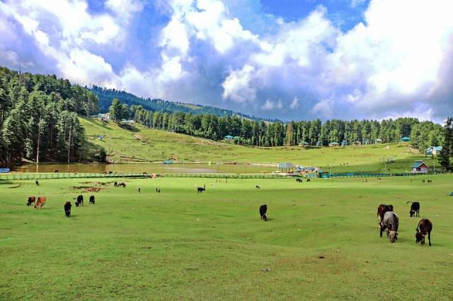 Hill Station, Mountain, Land, Landscape, Nature, Sky