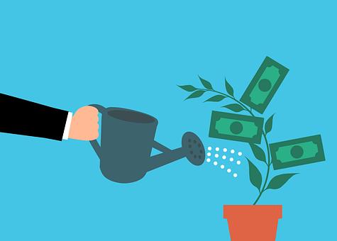 Impact bonds- Money, Cash, Tree, Watering, Hand
