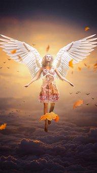 Ängel, Kvinnliga, Vingar, Kvinna