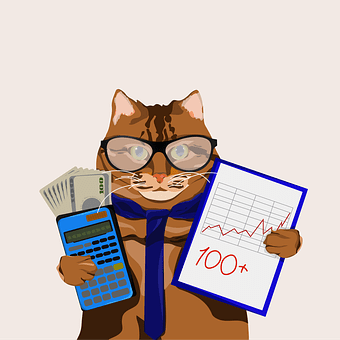 猫, 会計士, オフィス, ビジネス, お支払い, 数学, レポート, 収入