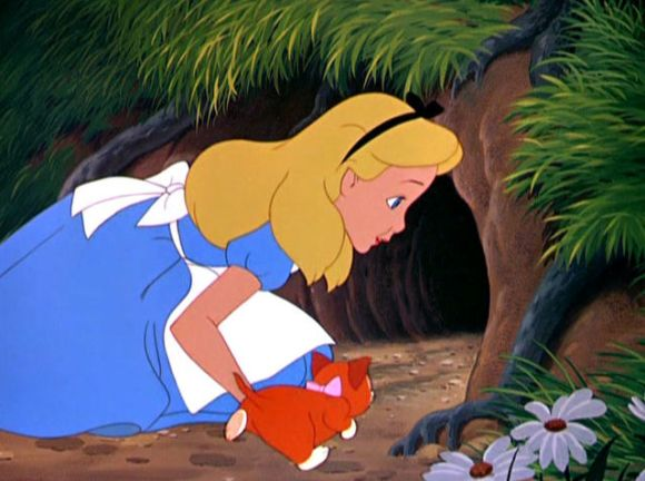 What does Alice follow the rabbit into?