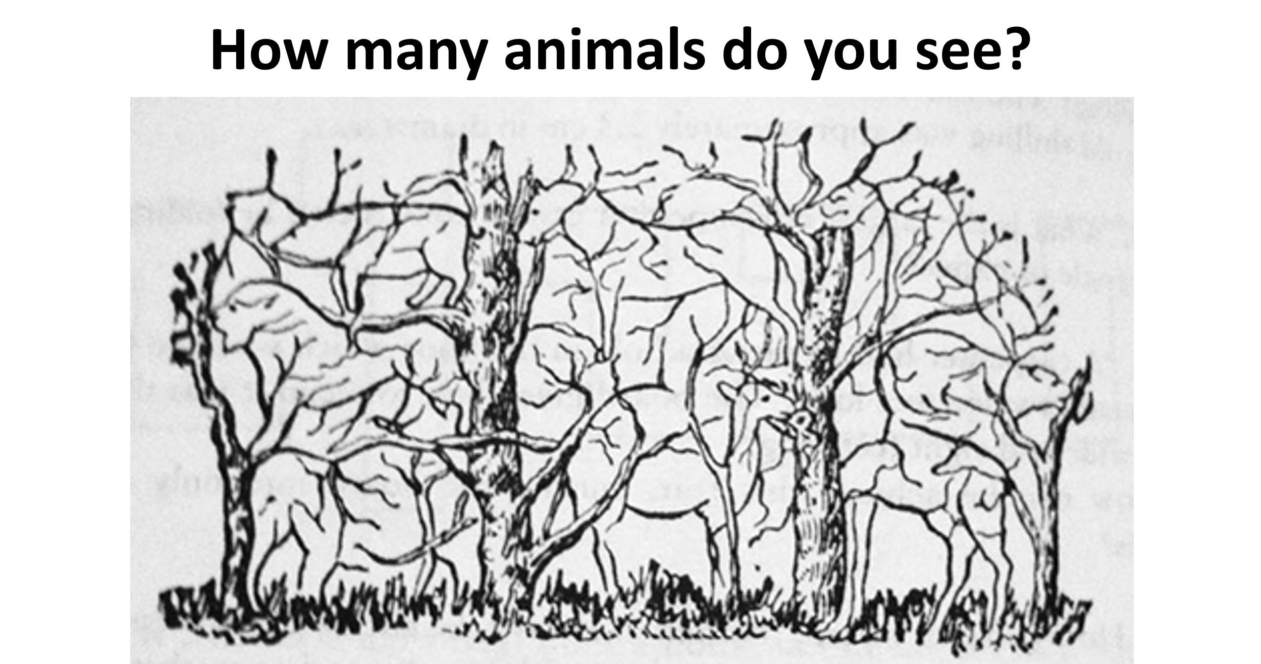 The Number Of Hidden Objects You See Can Determine If You Re Smarter Than Average