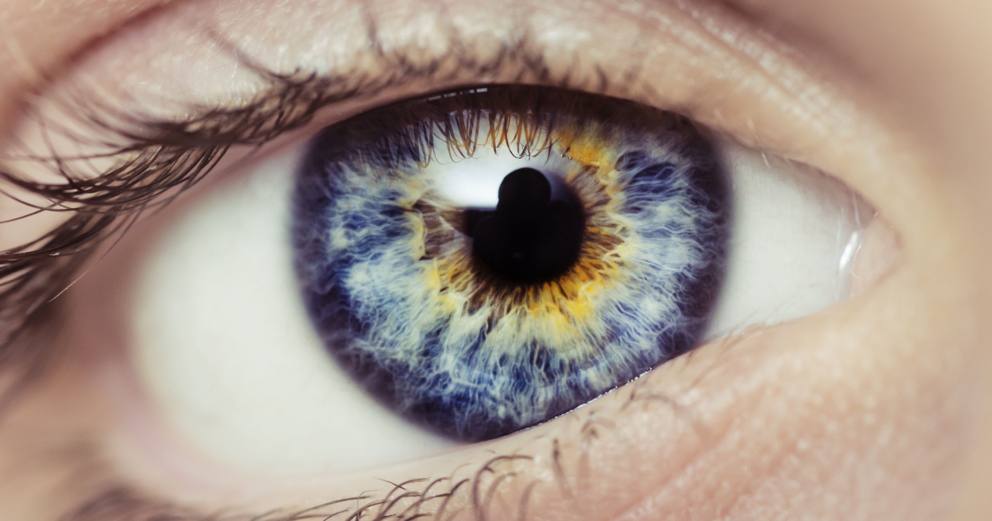 What S The Meaning Of Your Eye Color
